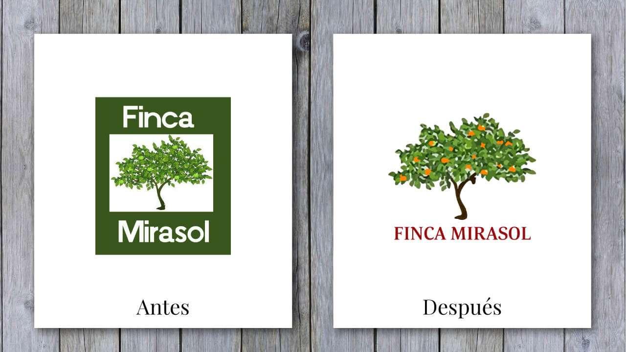 Comparativa-Mirasol